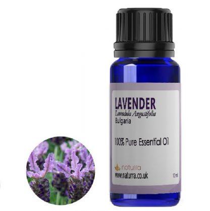 Lavender  Bulgaria (Lavendula Augustifolia)