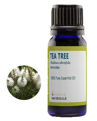 Turmeric Essential Oil (Curcuma Longa)