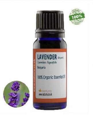 Lavender Organic (Lavendula angustifolia)